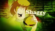 Shaggy's SDMI title card
