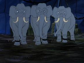 Elephants (Bedlam in the Big Top)