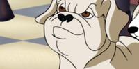 Rico (A Scooby-Doo Valentine)