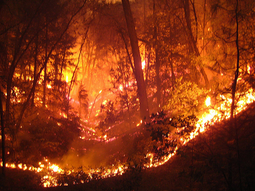 File:Boulder Creek Fire - Whiskeytown Complex- 2008.jpg