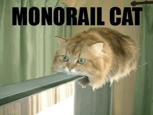 File:Monorailcat.jpg