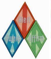 Cadette Breathe journey badges
