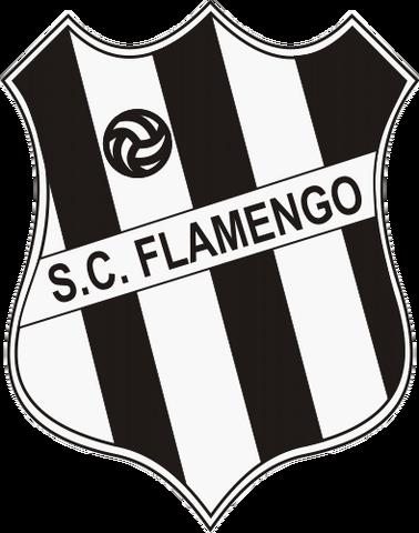 File:Sport Club Flamengo.png