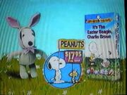 It's the Easter Beagle Charlie Brown from Peanuts 1994 VHS Promo