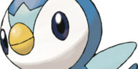 Piplup (character)