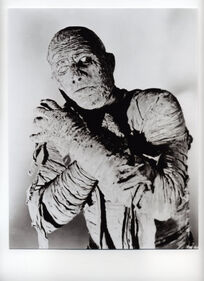 10101643A~Boris-Karloff-The-Mummy-Posters