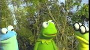Kermits Swamp Years Preview