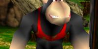 Conga the Ape (character)