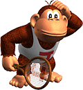DKJR Tennis