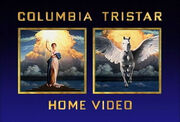 1993 Columbia TriStar Home Video Logo