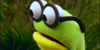 Goggles (Kermit's Swamp Years)