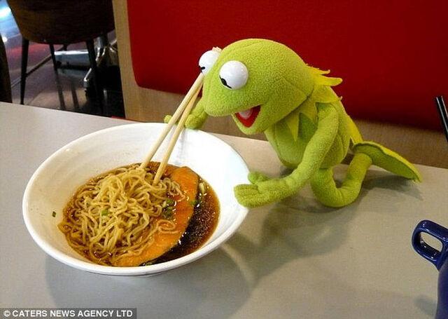 File:Kermit 5.jpg