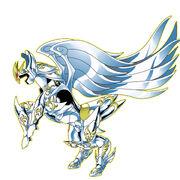 Pegasus Cloth 4