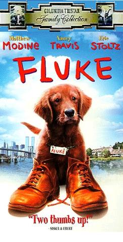 File:Fluke, 1999 VHS.png