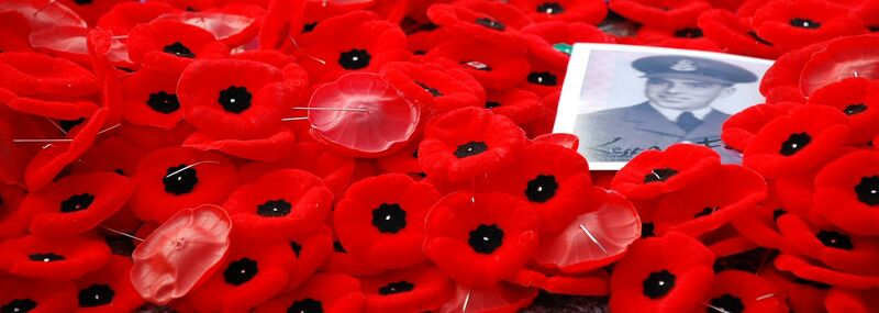 Poppies by Benoit Aubry of Ottawa