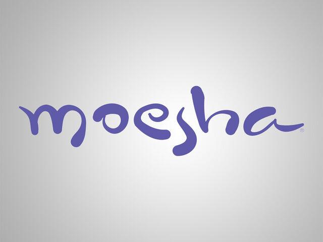 File:Moesha Title Card.jpg