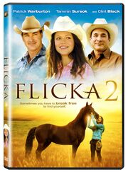 2010 - Flicka 2 DVD Cover