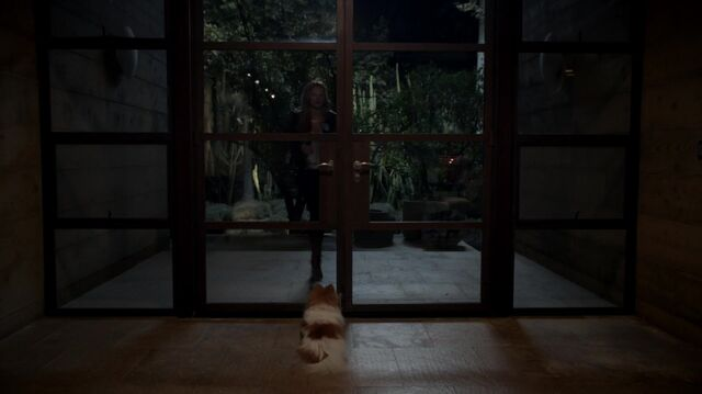 File:Scream S01E01 Pilot 1080p KISSTHEMGOODBYE NET 0117.jpg
