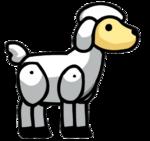 Lamb Animal