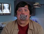 5x15-Guy with Kitten in his Mouth