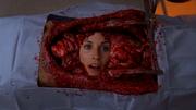 8x3 Maddox in body