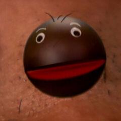 Turk's mole