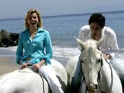 5x24 JD Kim horseback