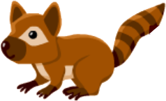 File:Coati.png