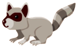 File:Raccoon.png
