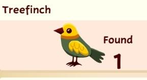 File:Treefinch.jpg
