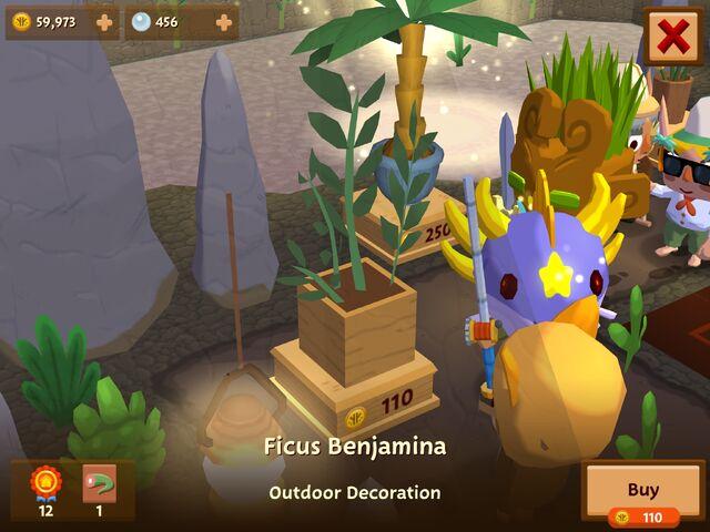 File:FicusBenjamina.jpeg