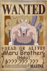 Haku wanted