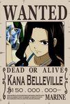 Wantedposter6
