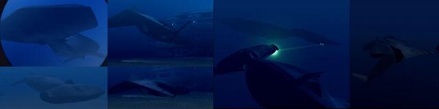 File:Marauder Attack Submarine.jpg