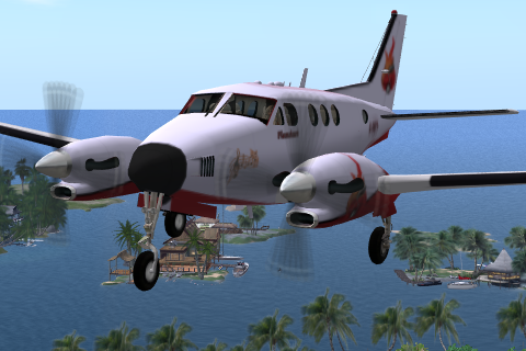 File:Wikia-Visualization-Main,secondlifeaviation.png