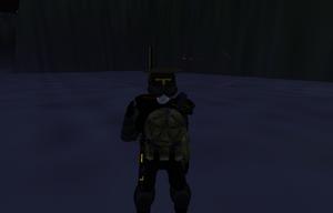 RILER wearing M1V1 type armour