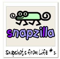 File:Snapzilla-03-05-05.jpg
