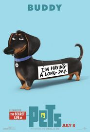 Secret Life of Pets Character Poster 9