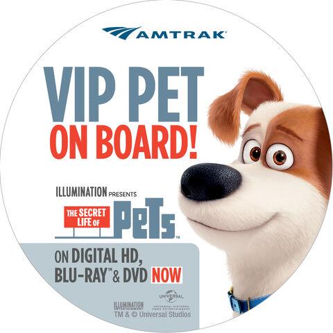 File:Amtrak.jpg