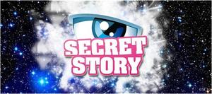SecretStoryLogo