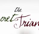 The Secret Triangle Wiki