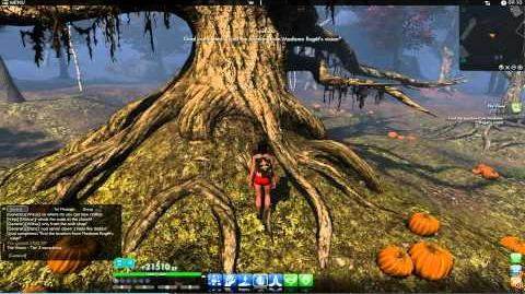 ★ The Secret World ★ - The Visions