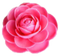 Artifact Fixer Camellia