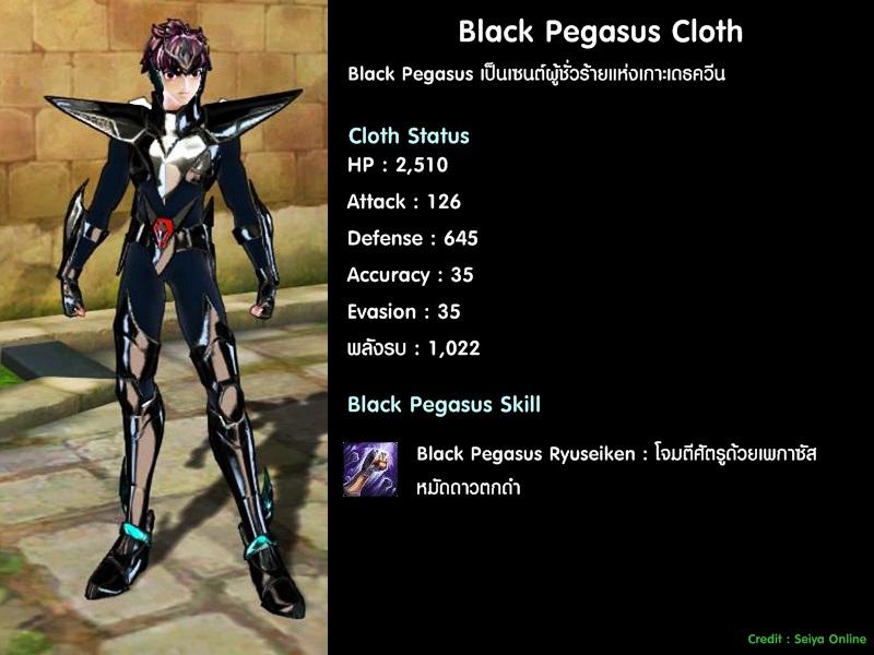Cloth-Black-pegasus00