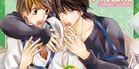 Sekai-ichi Hatsukoi Volume 12