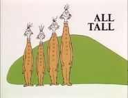 We all are tall