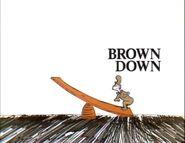 Brown down