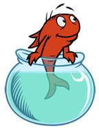 Character fish