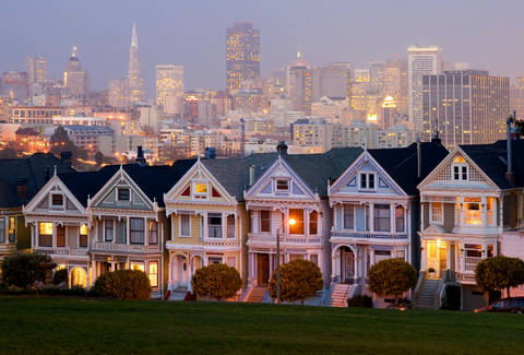 File:Painted-ladies.jpeg