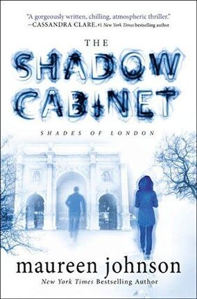 The Shadow Cabinet Official